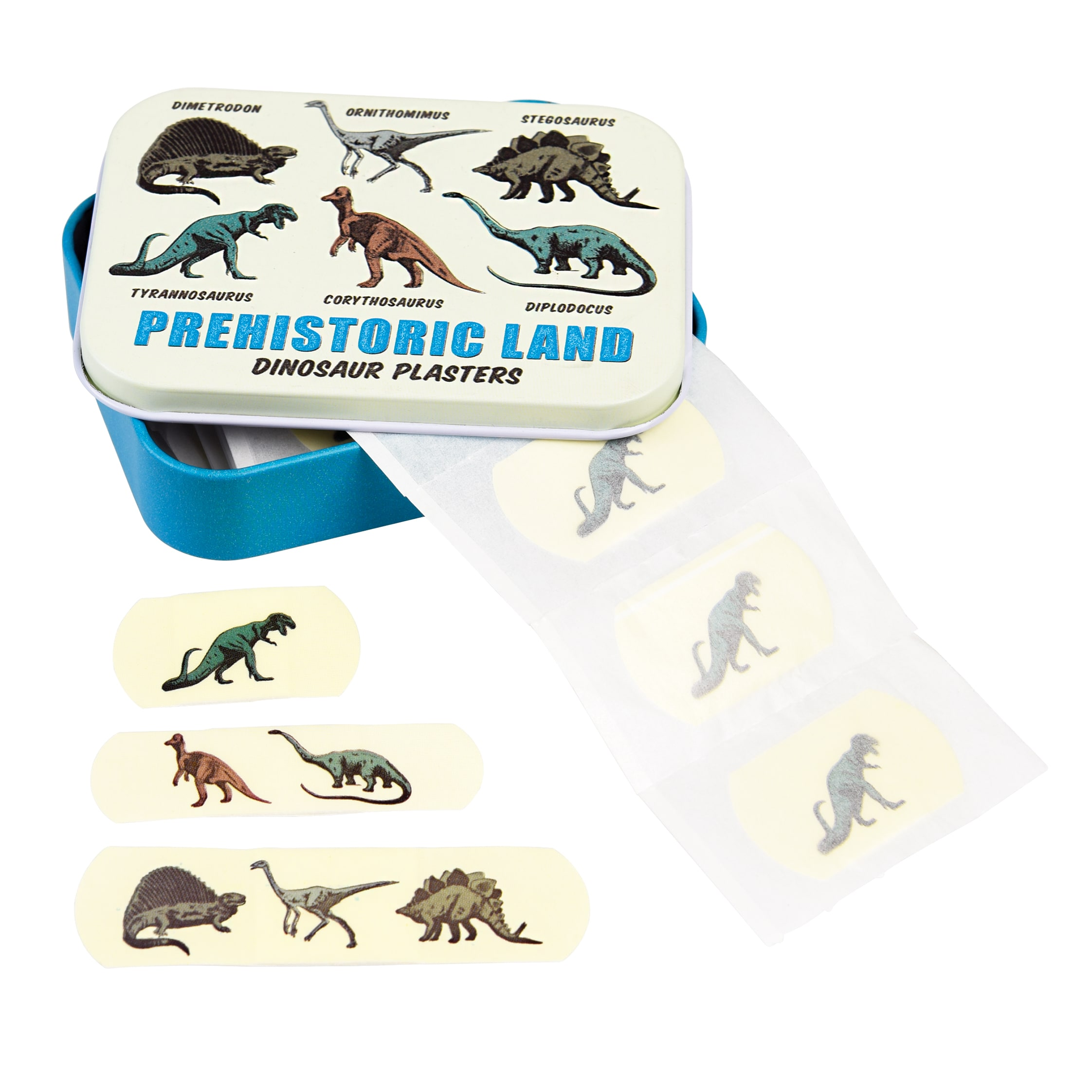Prehistoric Land Plasters