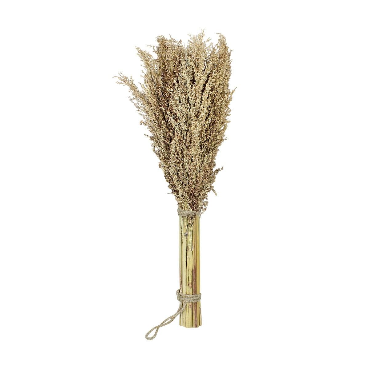 Grass Decoration Dried