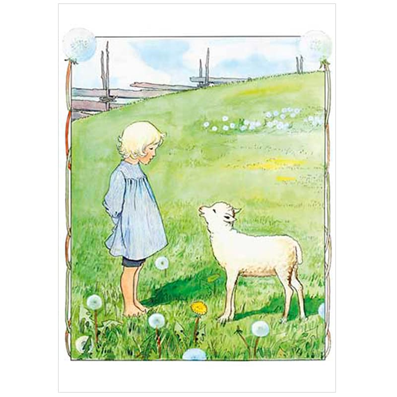 Poster Bä, Bä Vita Lamm