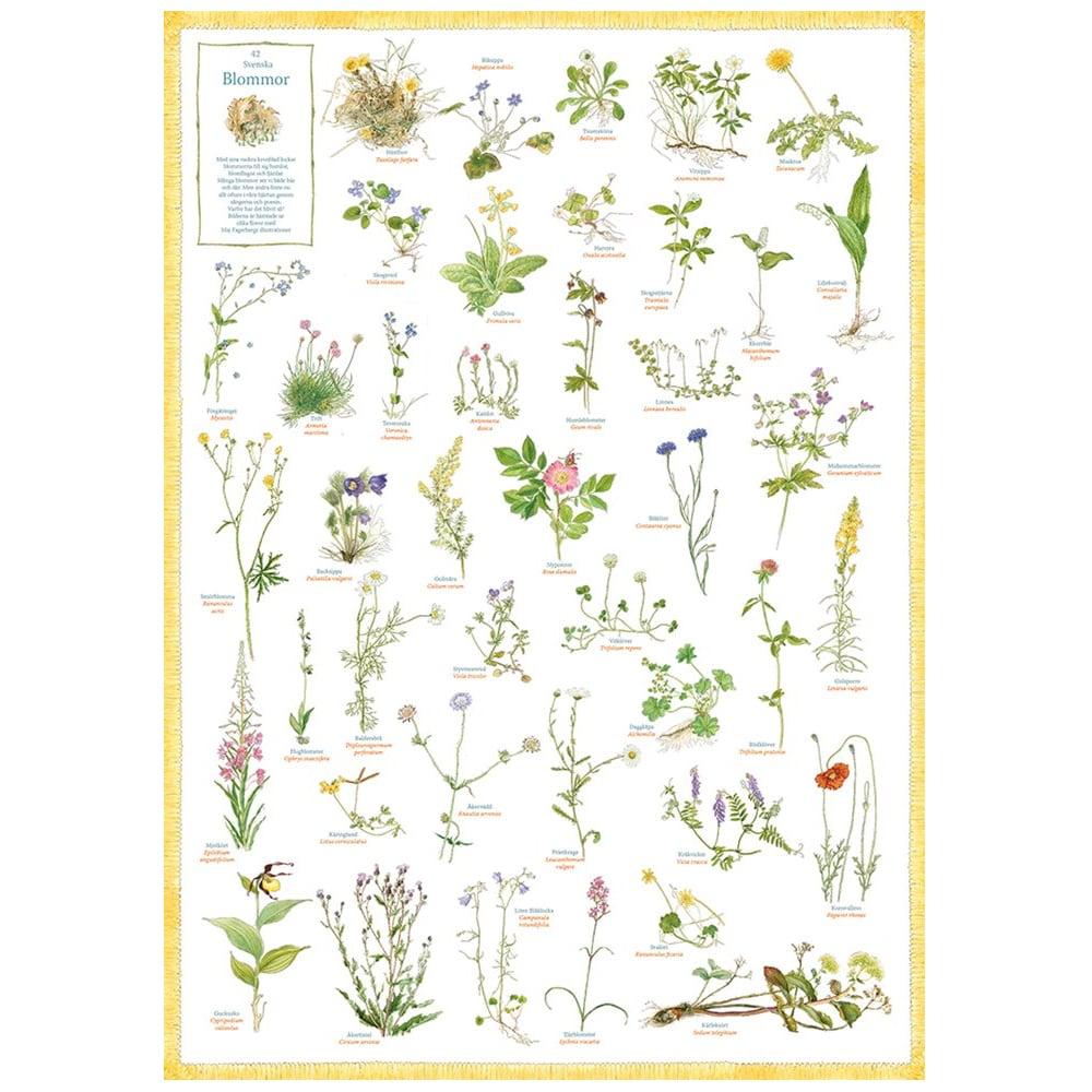 Poster Swedish Flowers