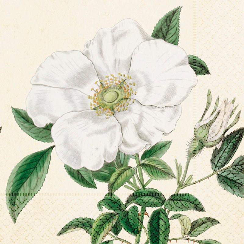 Napkin White Rose