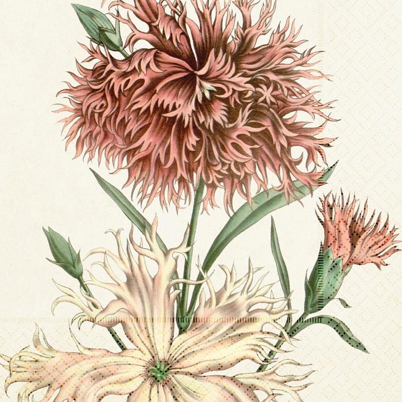 Napkin Carnation