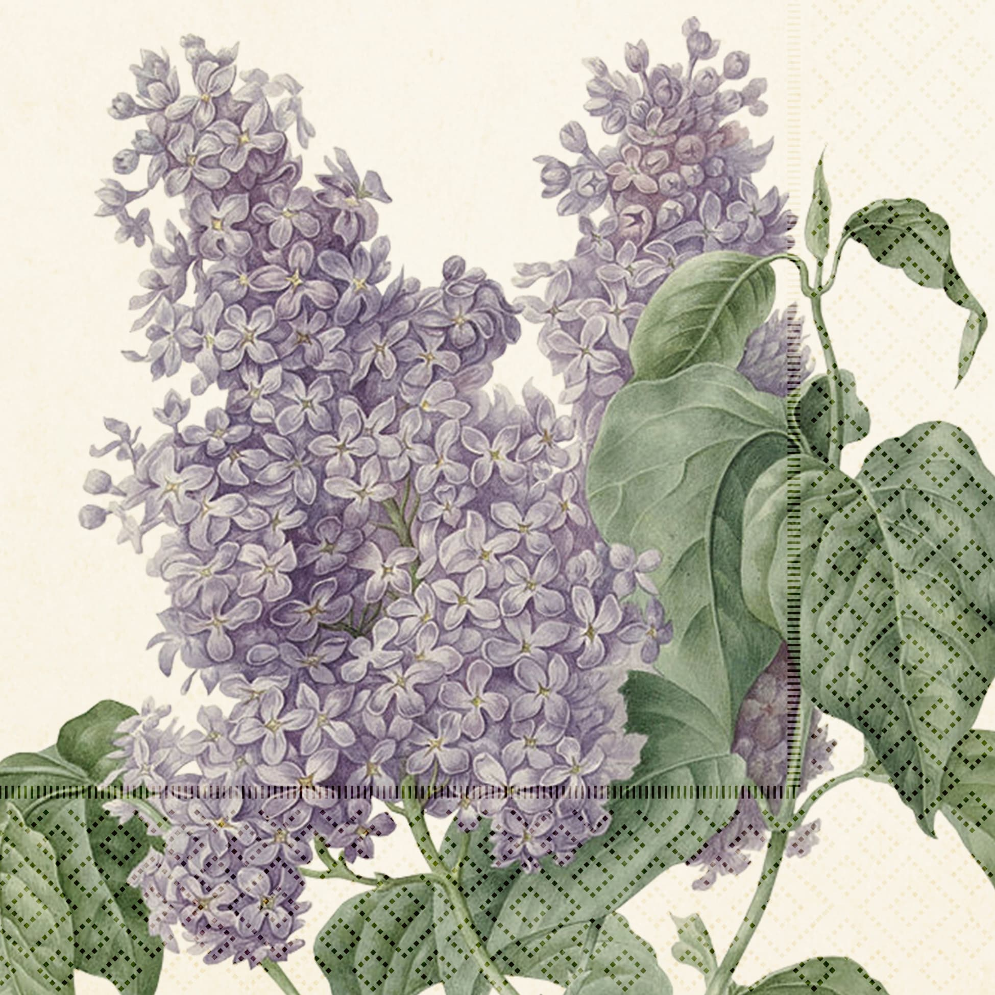 Napkin Lilac