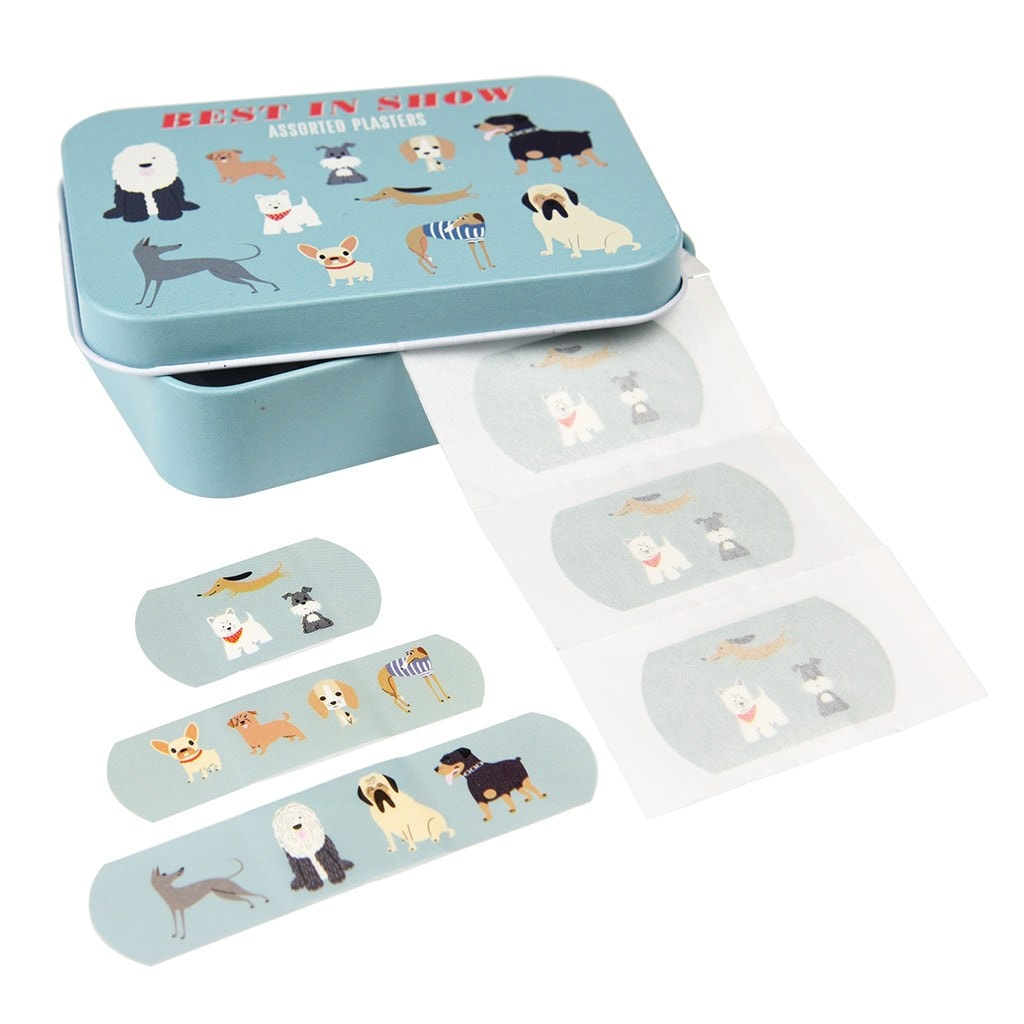 Best In Show Plasters